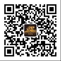 四月活动新闻稿847.png